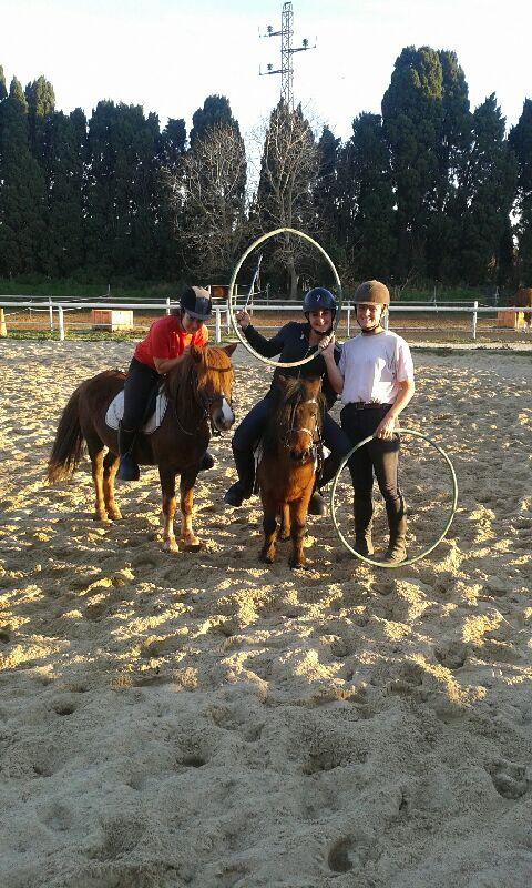 centre formation bpjeps equitation