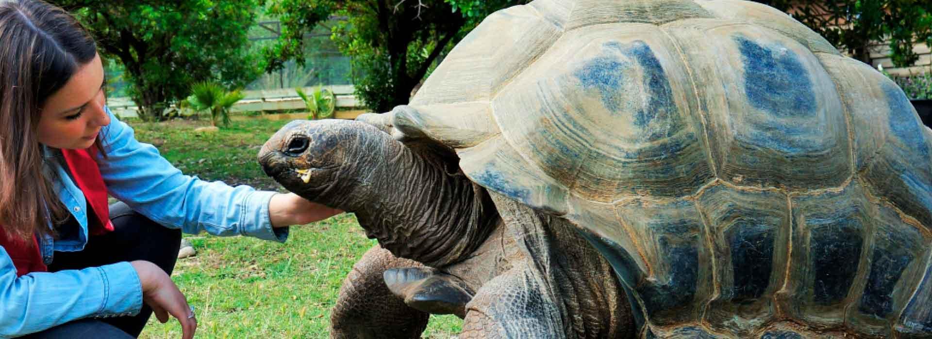 formation continue animalier en parc zoologique