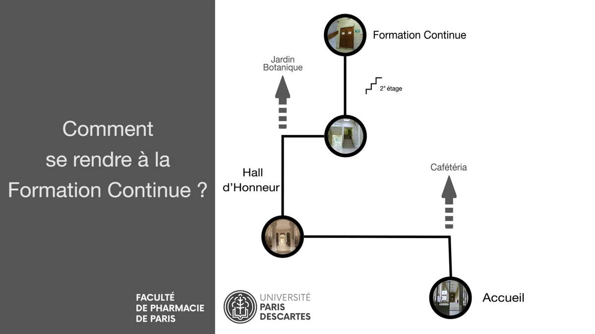 formation continue paris 5 pharmacie