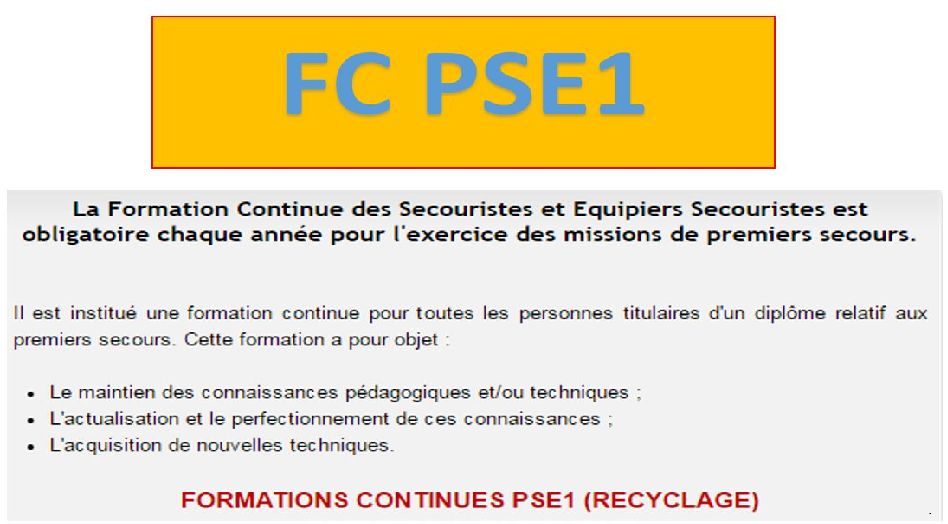 formation continue pse1