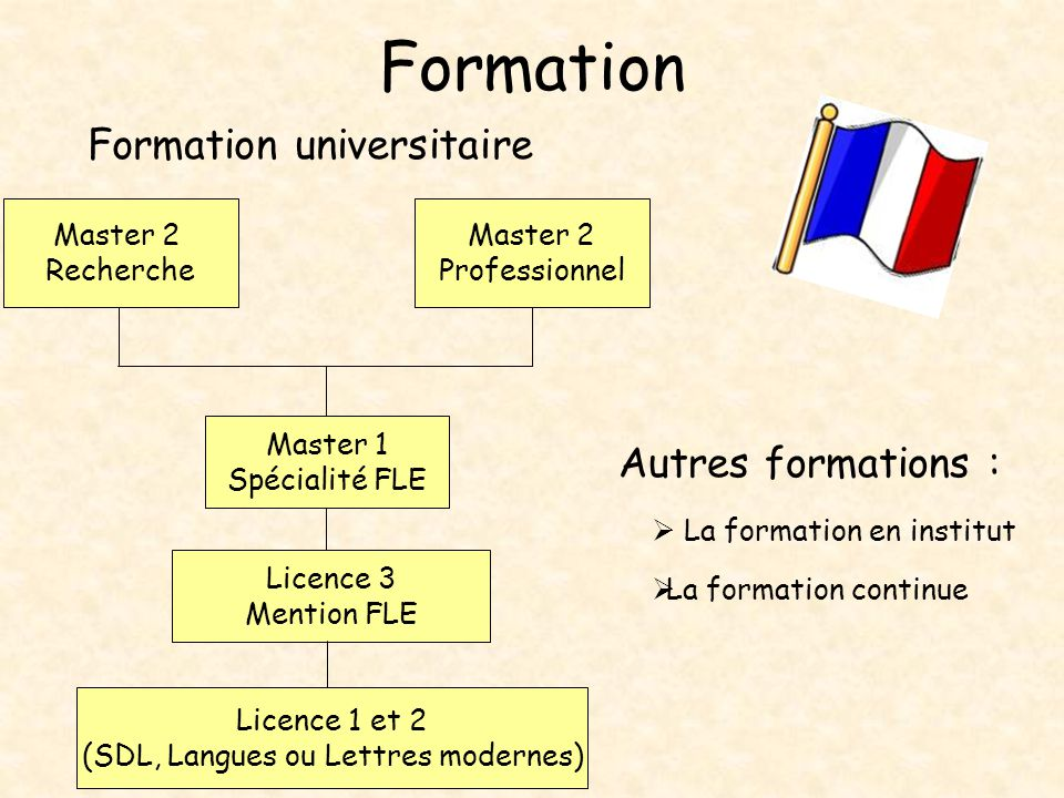 formation professionnelle fle