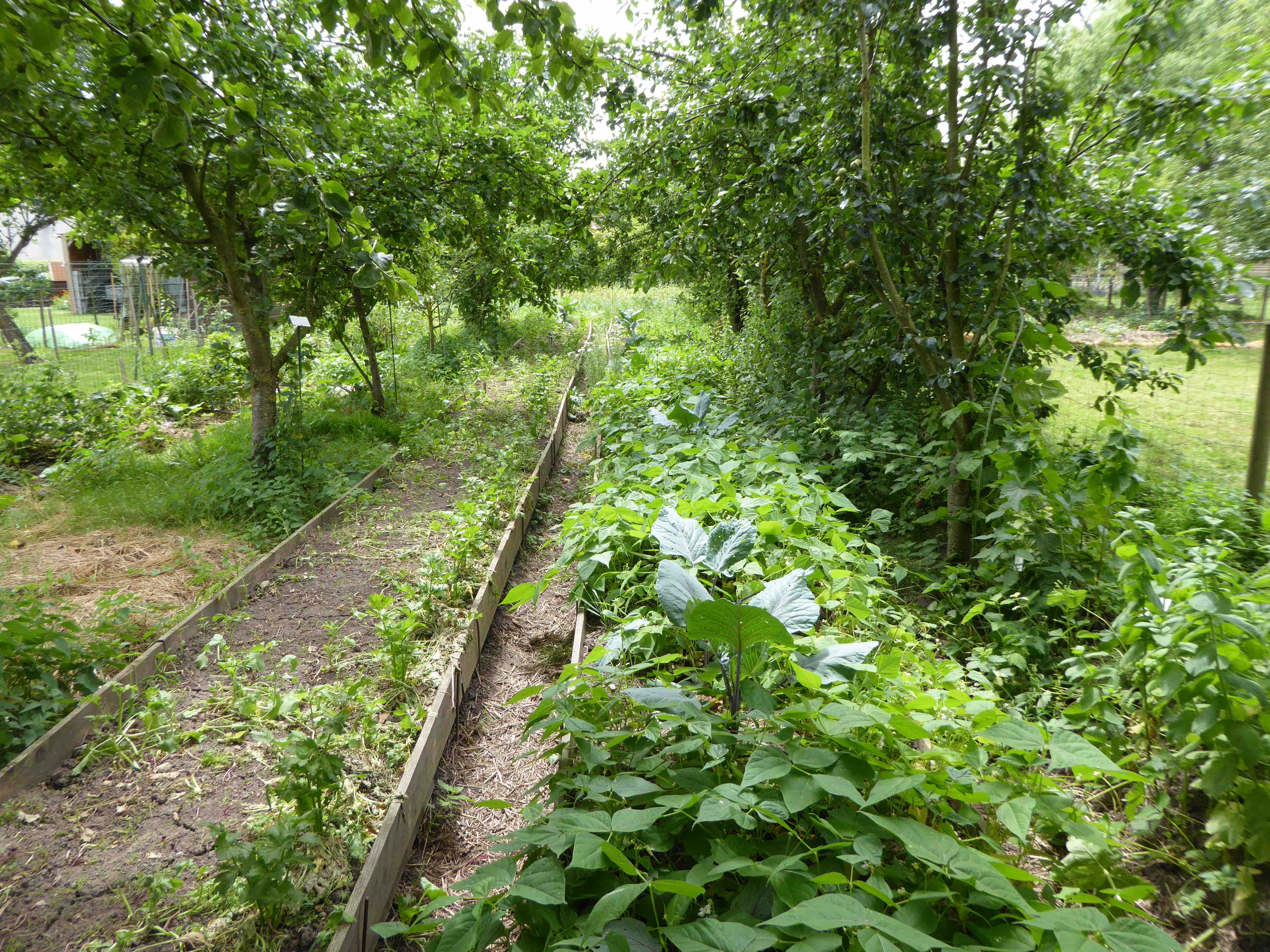 formation professionnelle permaculture